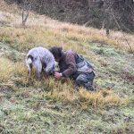 truffel zoeken